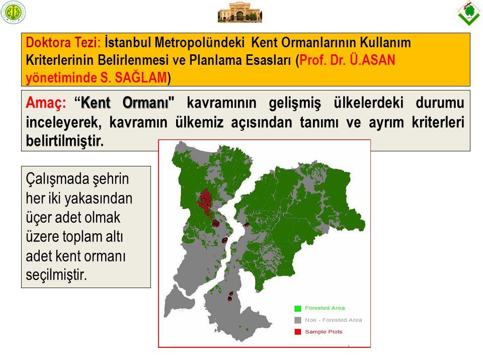Doktora Tezi: İstanbul Metropolündeki Kent Ormanlarının Kullanım Kriterlerinin Belirlenmesi ve Planlama Esasları (Prof. Dr. Ü.ASAN yönetiminde S. SAĞLAM)