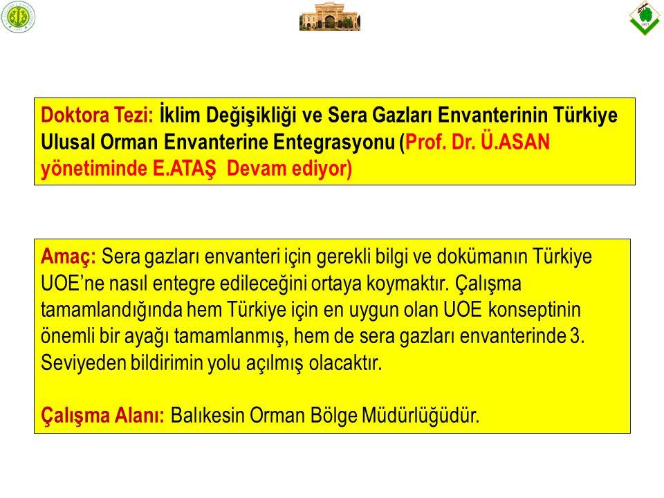 Doktora Tezi: İklim Değişikliği ve Sera Gazları Envanterinin Türkiye Ulusal Orman Envanterine Entegrasyonu (Prof. Dr. Ü.ASAN yönetiminde E.ATAŞ Devam ediyor)