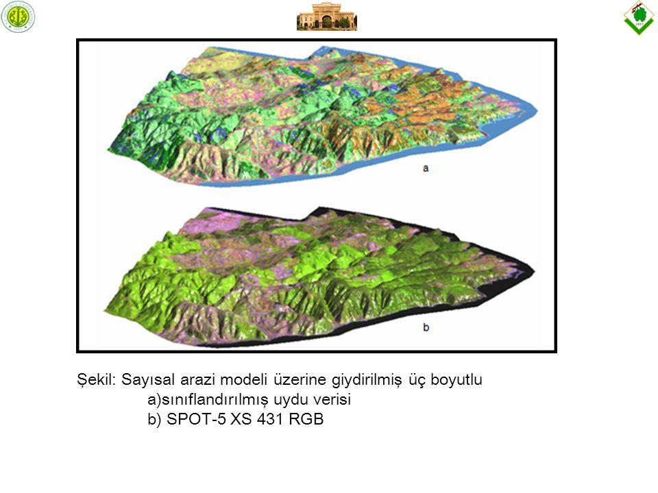 Şekil: Sayısal arazi modeli üzerine giydirilmiş üç boyutlu