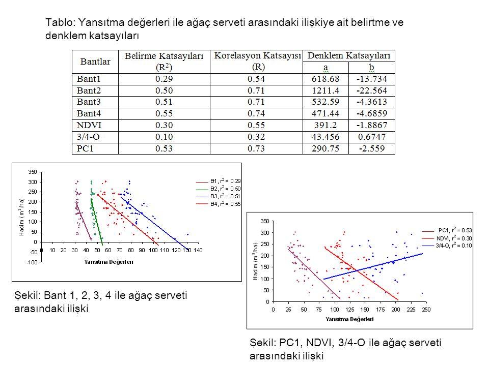 Tablo: Yansıtma değerleri ile ağaç serveti arasındaki ilişkiye ait belirtme ve denklem katsayıları