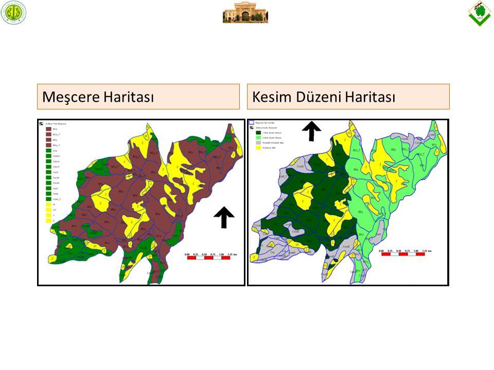 Meşcere Haritası Kesim Düzeni Haritası