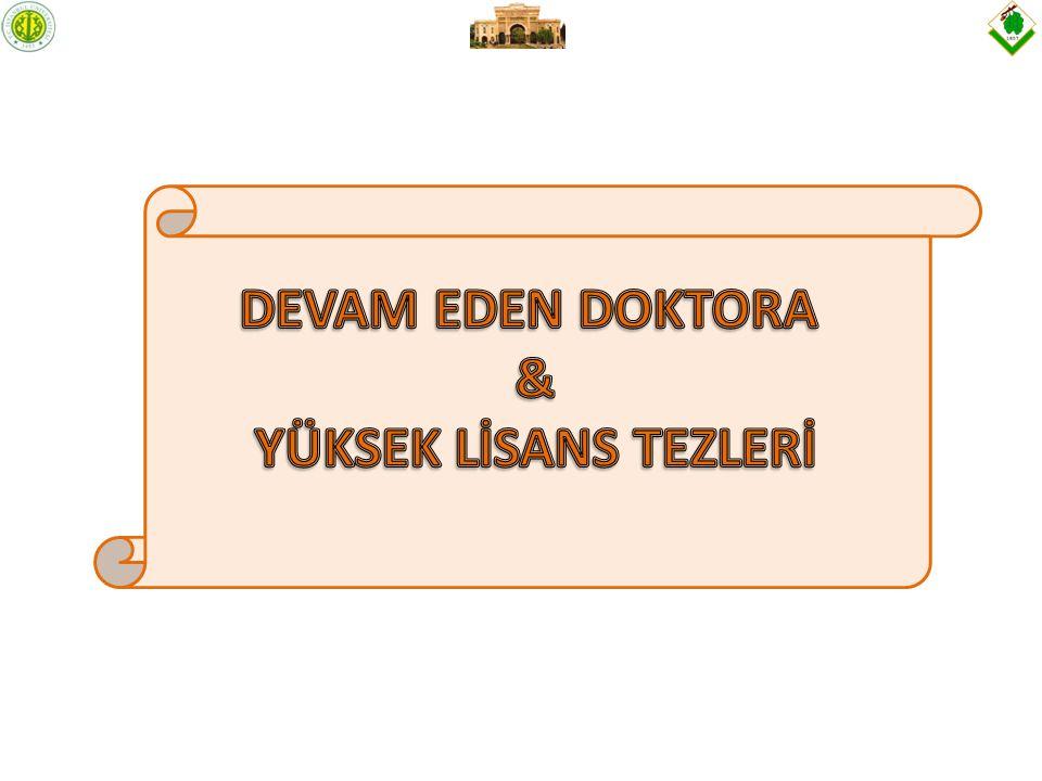 DEVAM EDEN DOKTORA & YÜKSEK LİSANS TEZLERİ