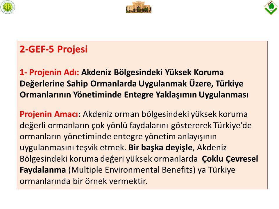2-GEF-5 Projesi