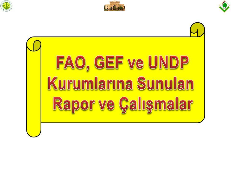 FAO, GEF ve UNDP Kurumlarına Sunulan Rapor ve Çalışmalar