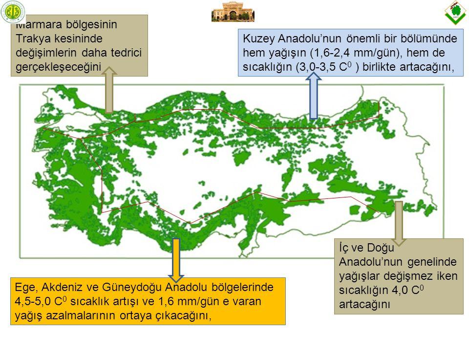 Marmara bölgesinin Trakya kesininde değişimlerin daha tedrici gerçekleşeceğini