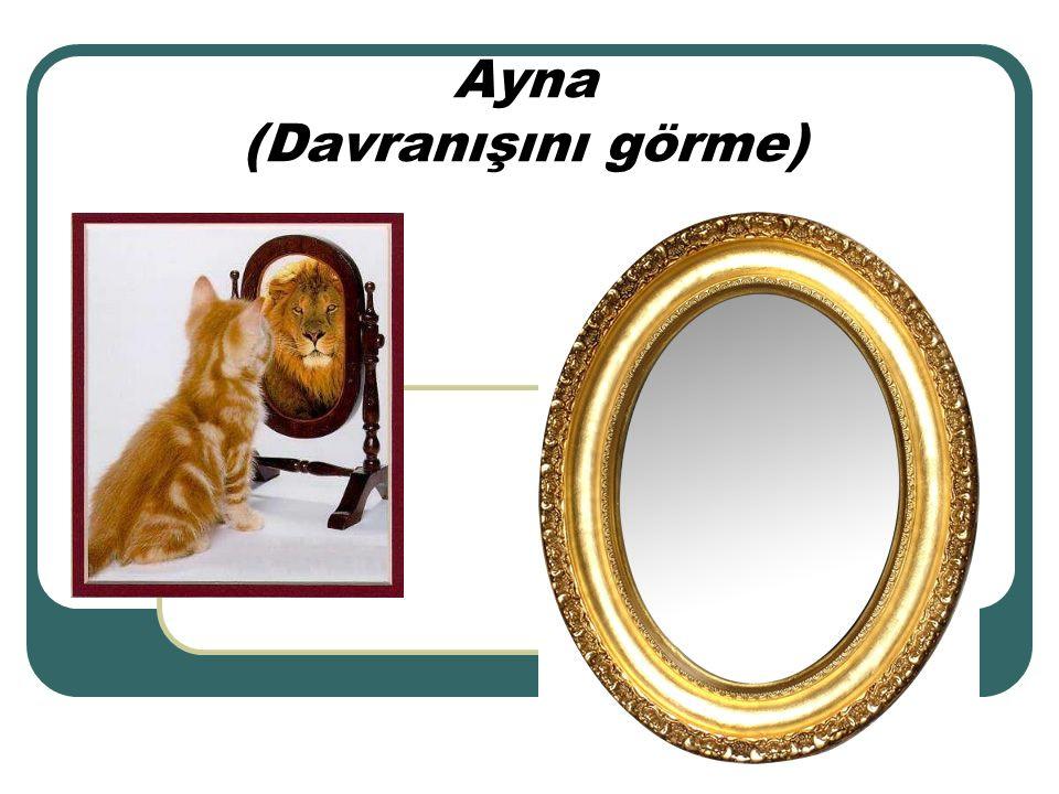 Ayna (Davranışını görme)
