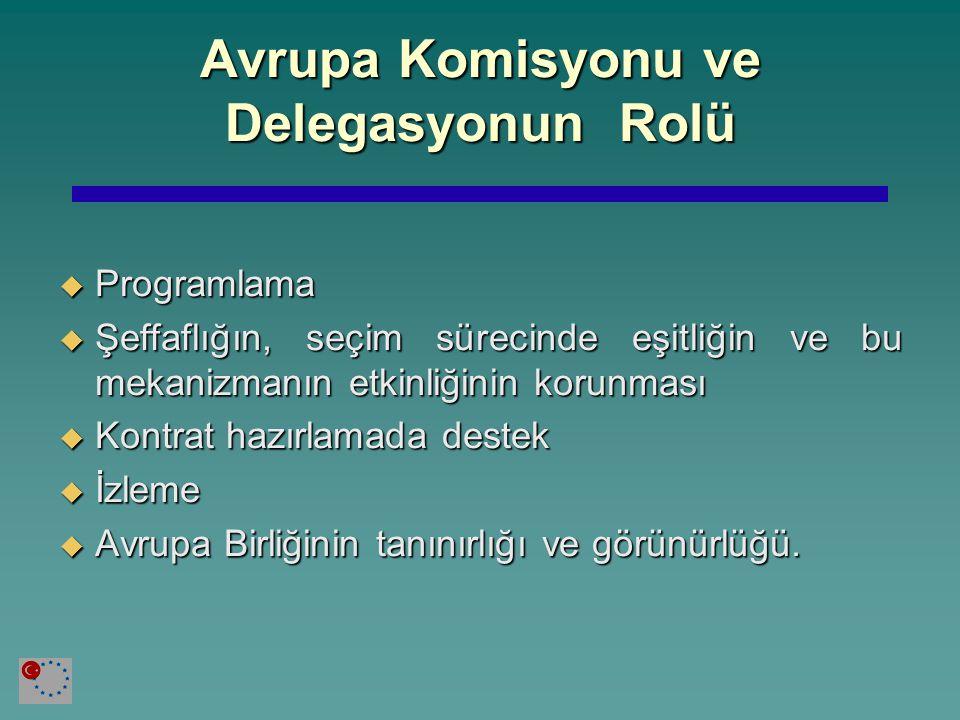 Avrupa Komisyonu ve Delegasyonun Rolü