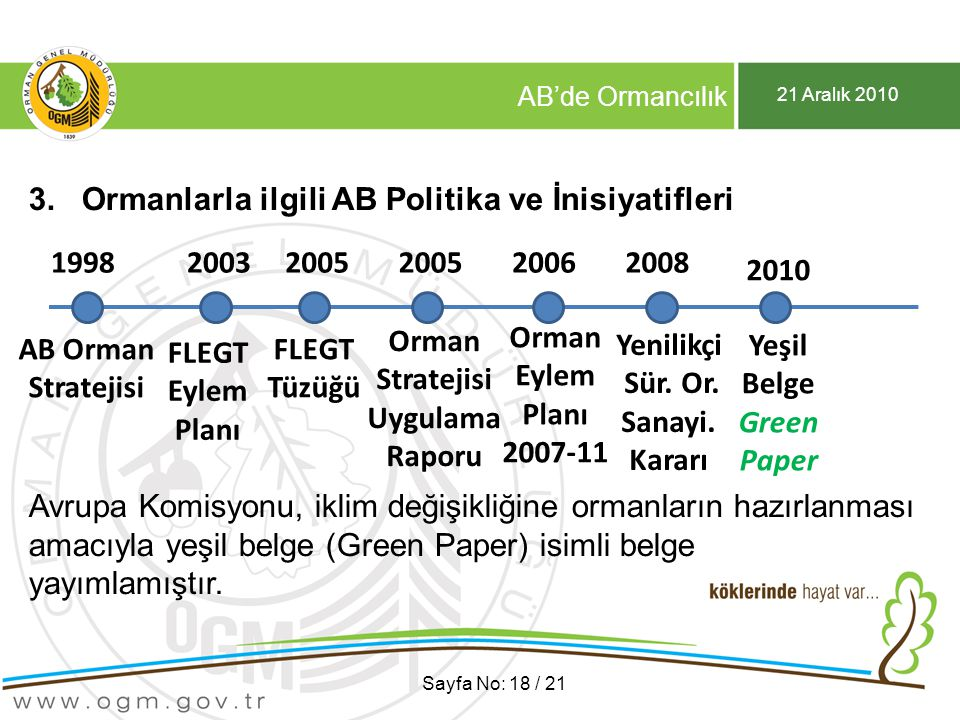 Yeşil Belge Green Paper