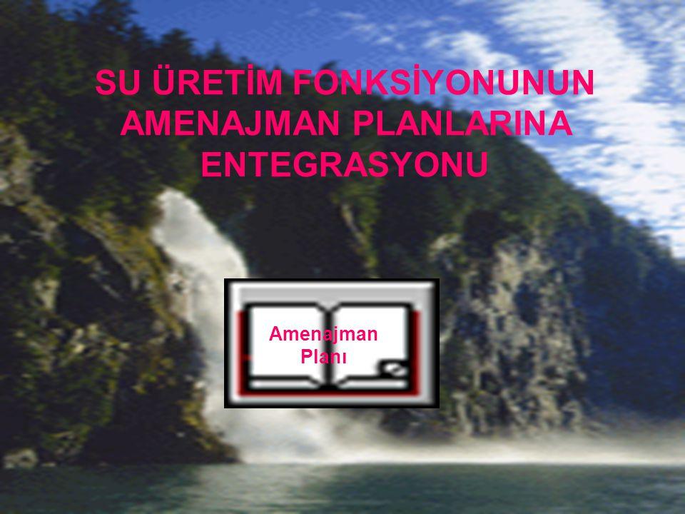 SU ÜRETİM FONKSİYONUNUN AMENAJMAN PLANLARINA ENTEGRASYONU