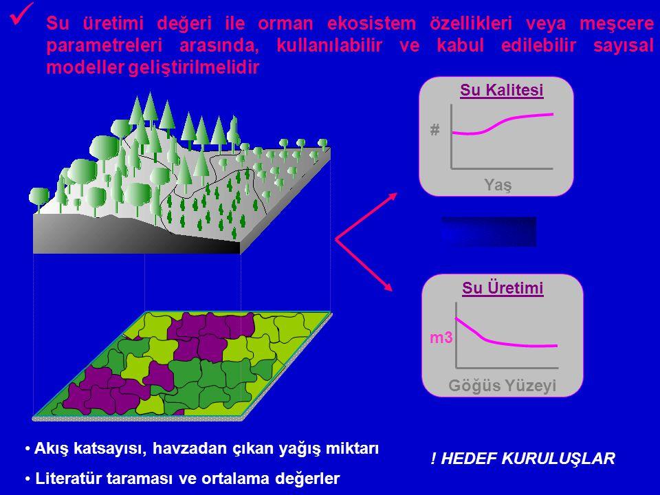 Su üretimi değeri ile orman ekosistem özellikleri veya meşcere parametreleri arasında, kullanılabilir ve kabul edilebilir sayısal modeller geliştirilmelidir