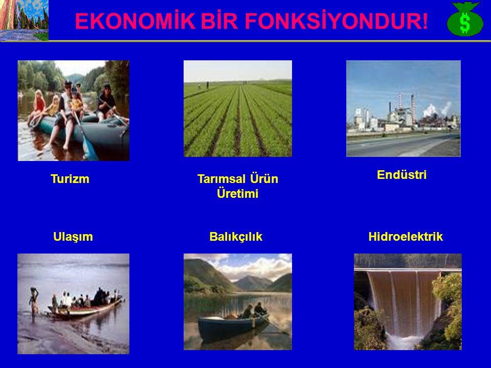 EKONOMİK BİR FONKSİYONDUR!