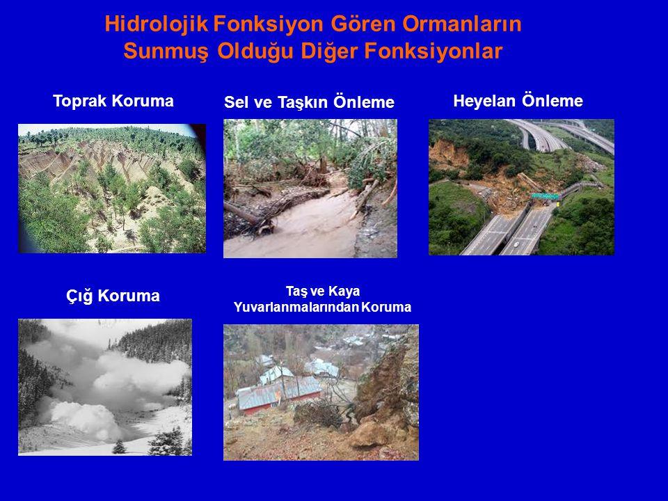 Hidrolojik Fonksiyon Gören Ormanların Sunmuş Olduğu Diğer Fonksiyonlar