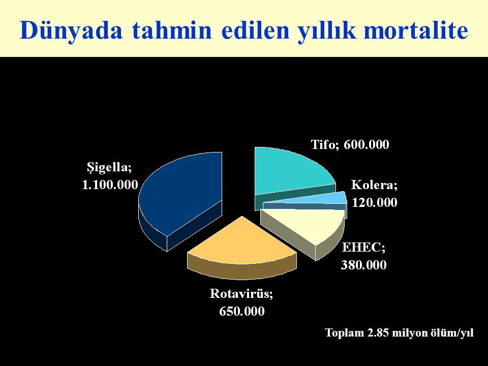 Dünyada tahmin edilen yıllık mortalite