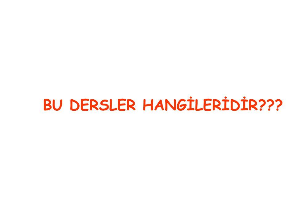 BU DERSLER HANGİLERİDİR