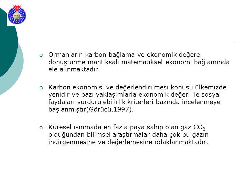 Ormanların karbon bağlama ve ekonomik değere dönüştürme mantıksalı matematiksel ekonomi bağlamında ele alınmaktadır.
