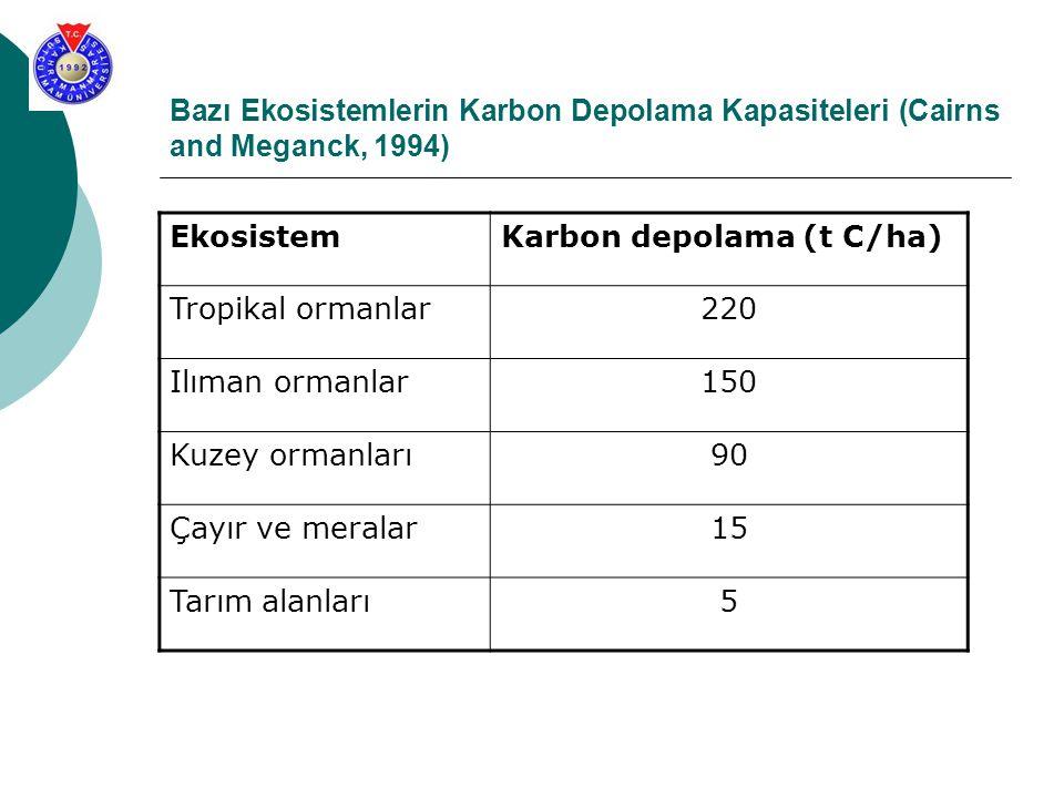 Bazı Ekosistemlerin Karbon Depolama Kapasiteleri (Cairns and Meganck, 1994)