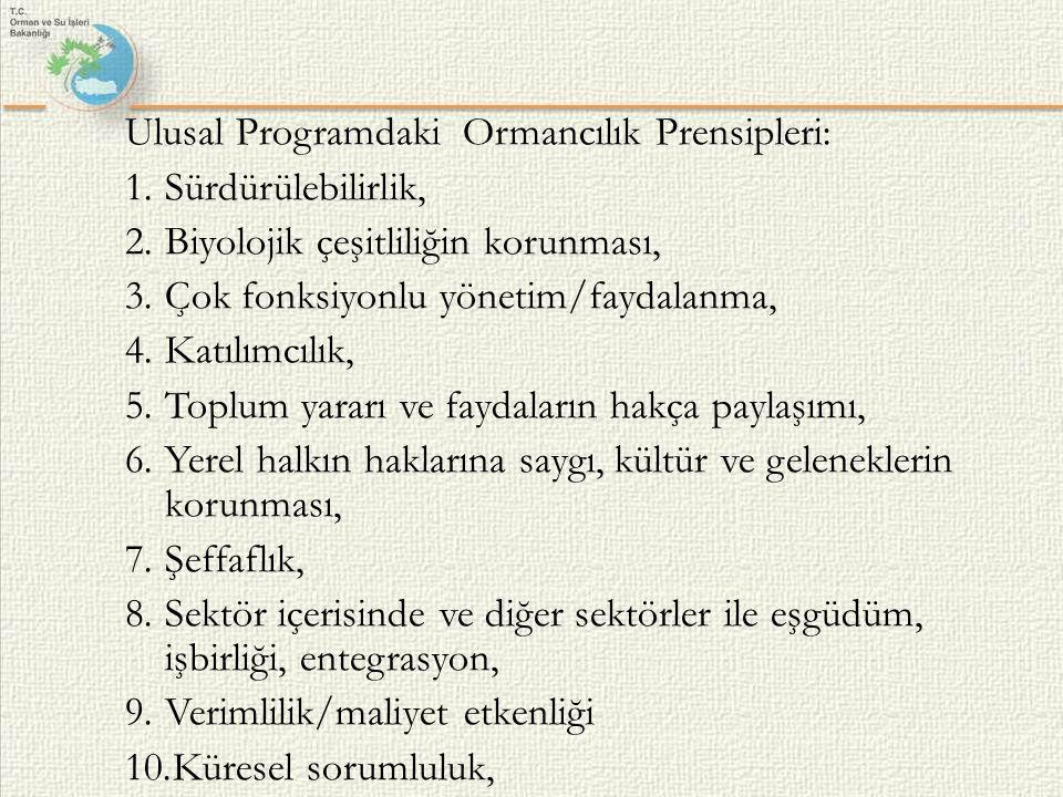 Ulusal Programdaki Ormancılık Prensipleri: