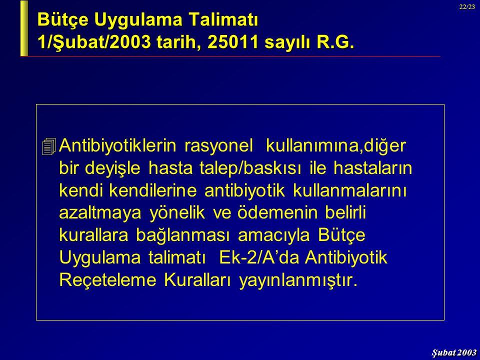 Bütçe Uygulama Talimatı 1/Şubat/2003 tarih, 25011 sayılı R.G.