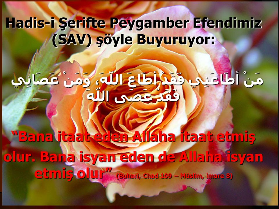 Hadis-i Şerifte Peygamber Efendimiz (SAV) şöyle Buyuruyor: