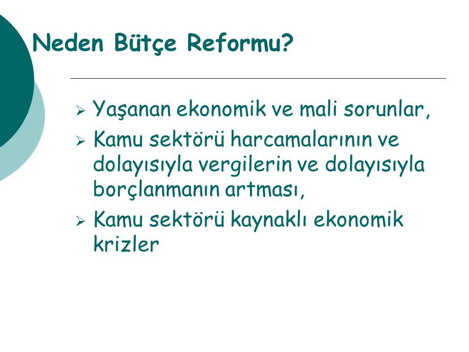 Neden Bütçe Reformu Yaşanan ekonomik ve mali sorunlar,