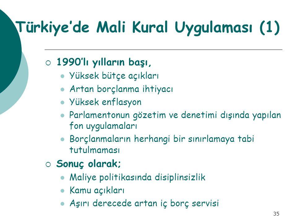 Türkiye'de Mali Kural Uygulaması (1)