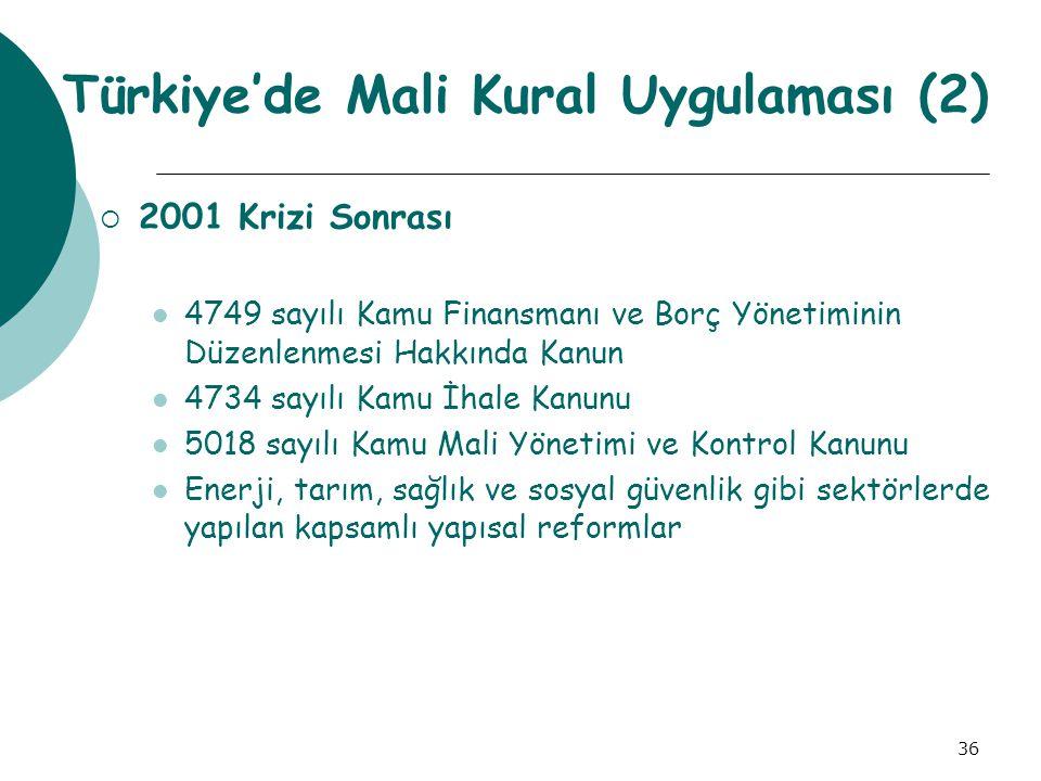 Türkiye'de Mali Kural Uygulaması (2)