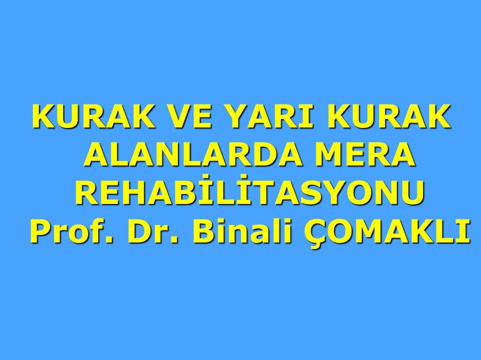 KURAK VE YARI KURAK ALANLARDA MERA REHABİLİTASYONU Prof. Dr