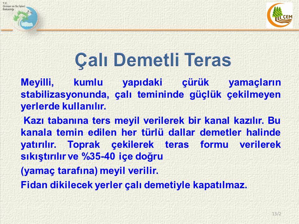 Çalı Demetli Teras Meyilli, kumlu yapıdaki çürük yamaçların stabilizasyonunda, çalı temininde güçlük çekilmeyen yerlerde kullanılır.