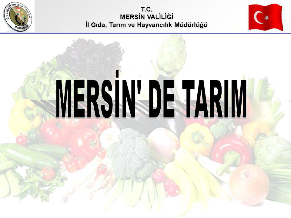İl Gıda, Tarım ve Hayvancılık Müdürlüğü