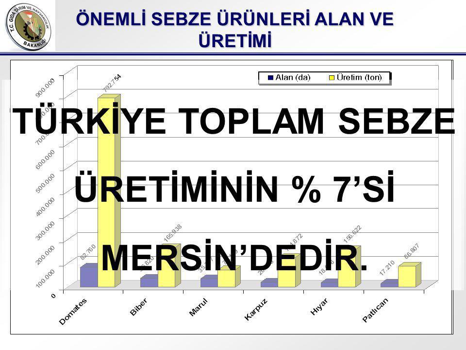 TÜRKİYE TOPLAM SEBZE ÜRETİMİNİN % 5'İ