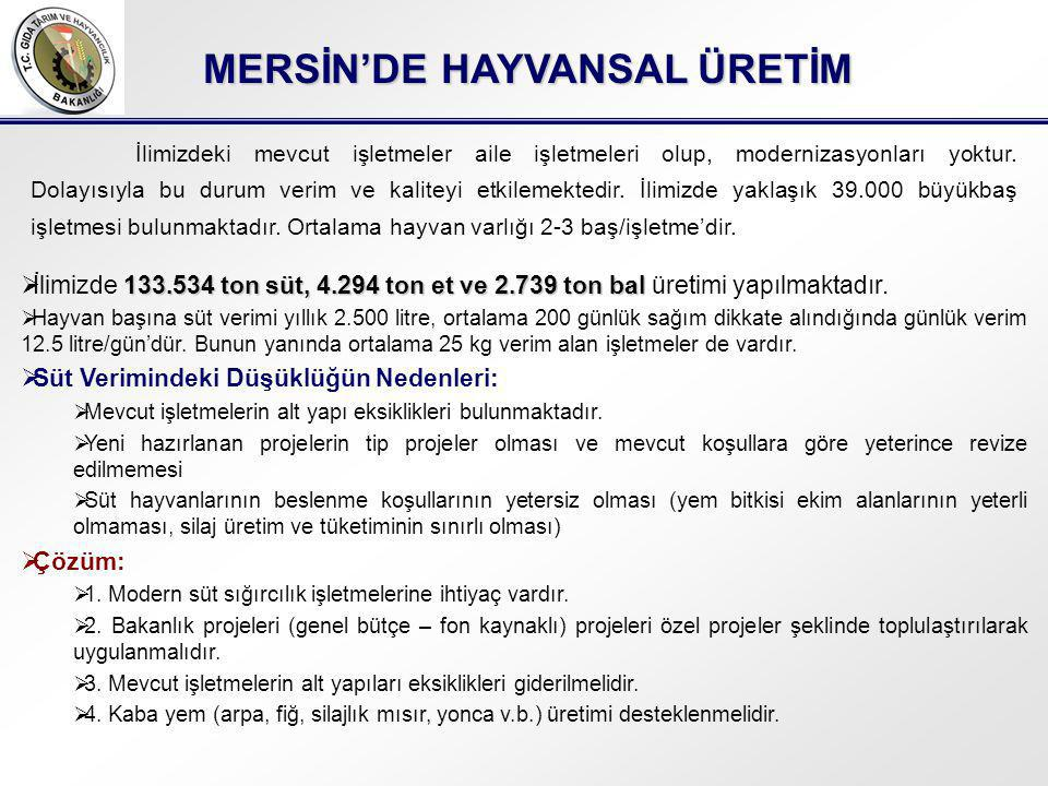 MERSİN'DE HAYVANSAL ÜRETİM