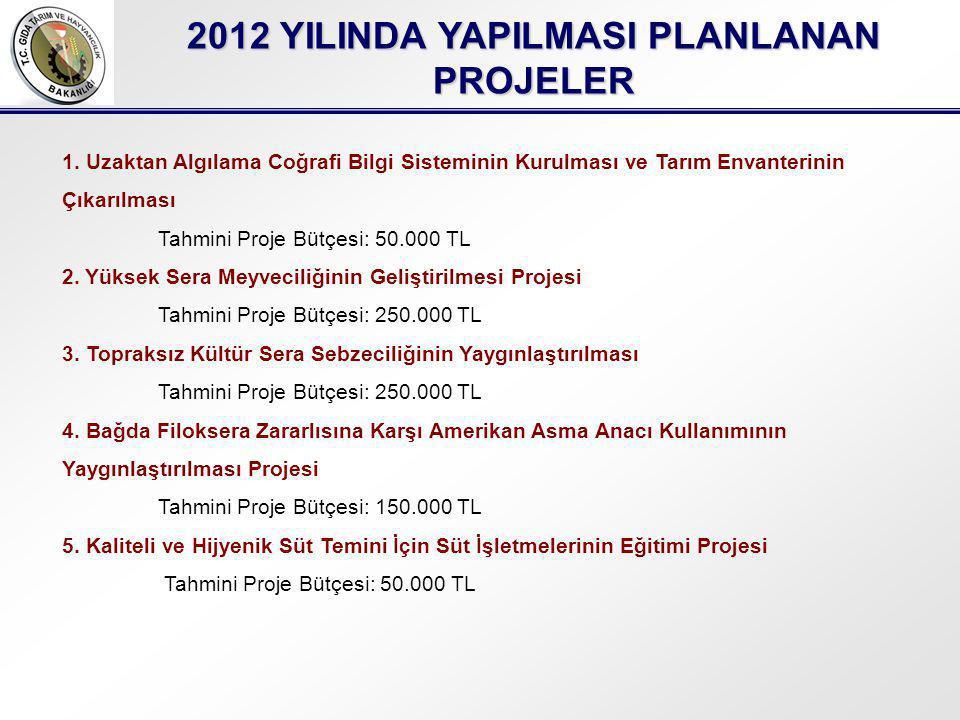 2012 YILINDA YAPILMASI PLANLANAN PROJELER