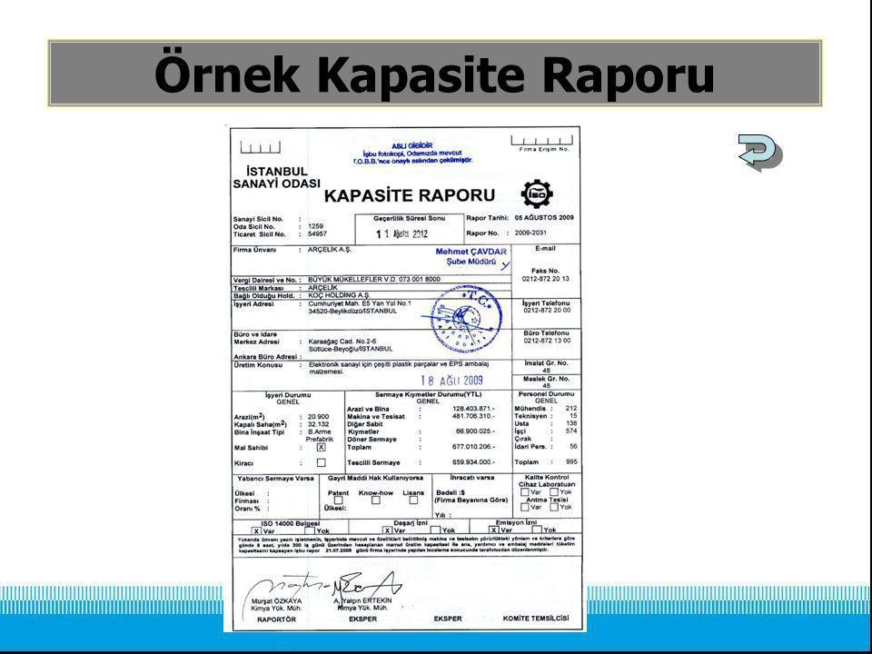 Örnek Kapasite Raporu
