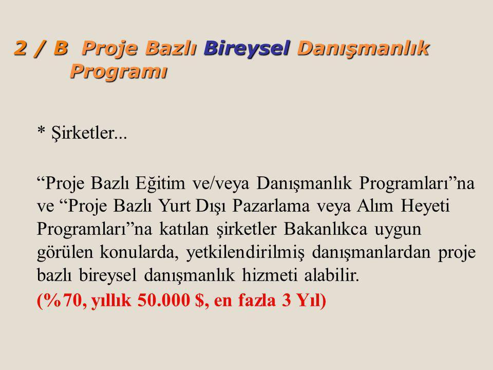 2 / B Proje Bazlı Bireysel Danışmanlık Programı
