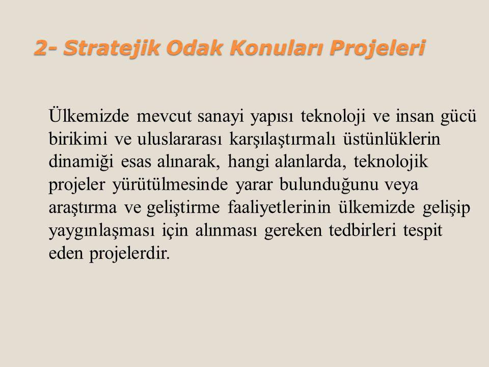 2- Stratejik Odak Konuları Projeleri