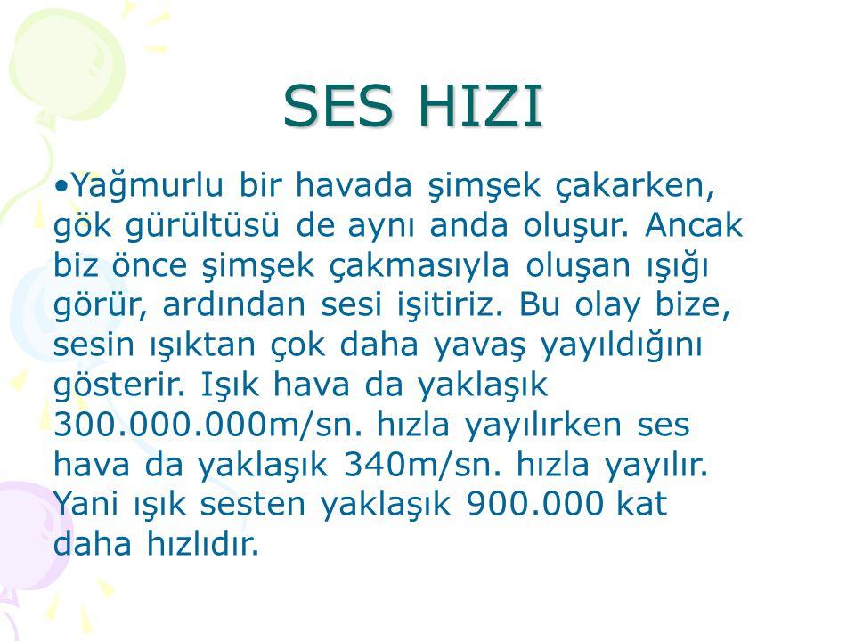 SES HIZI