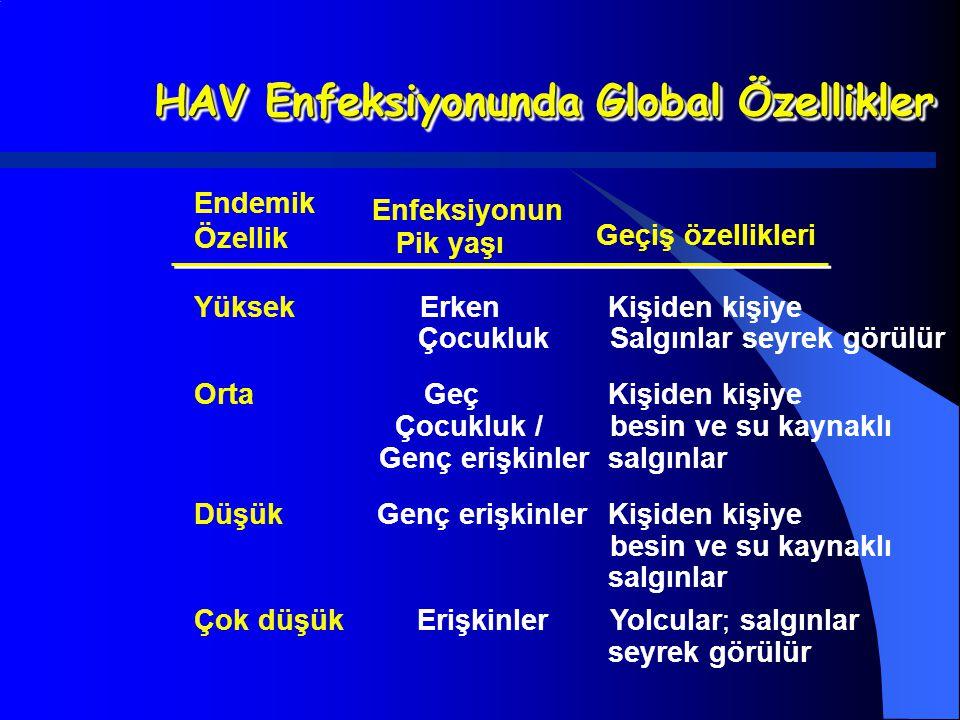 HAV Enfeksiyonunda Global Özellikler
