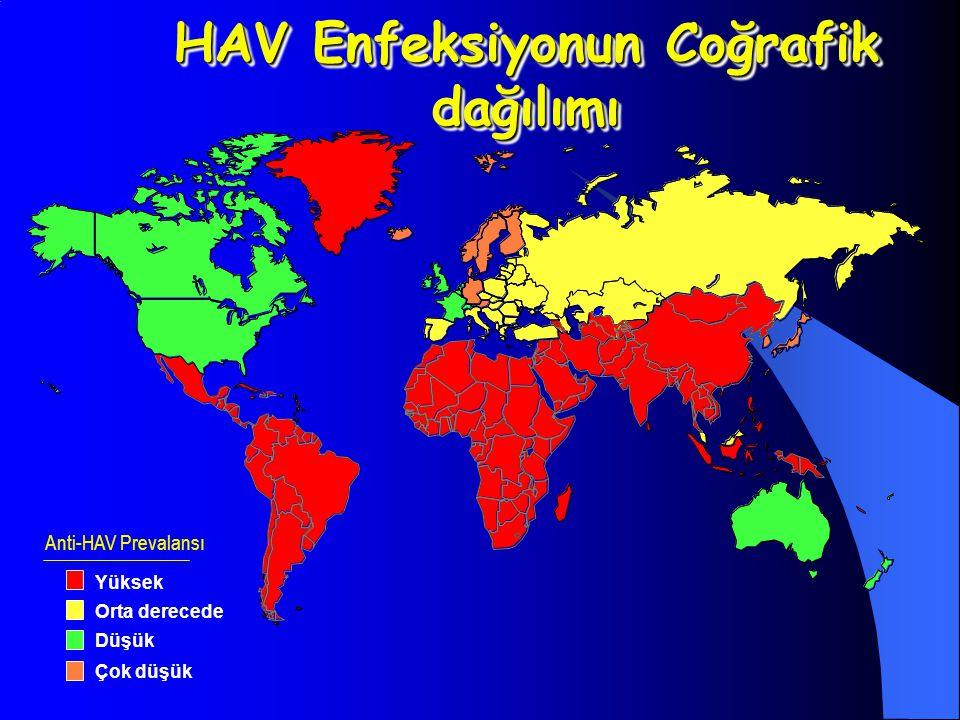 HAV Enfeksiyonun Coğrafik dağılımı