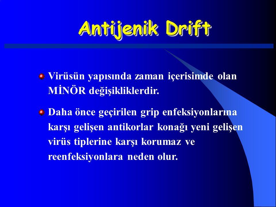 Antijenik Drift Virüsün yapısında zaman içerisimde olan MİNÖR değişikliklerdir.