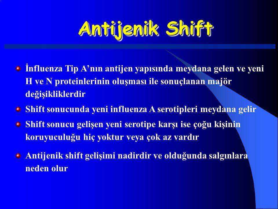 Antijenik Shift İnfluenza Tip A'nın antijen yapısında meydana gelen ve yeni H ve N proteinlerinin oluşması ile sonuçlanan majör değişikliklerdir.