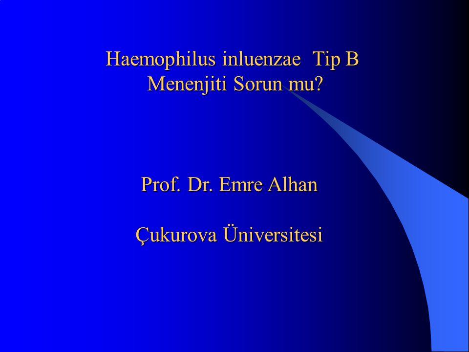 Haemophilus inluenzae Tip B Menenjiti Sorun mu