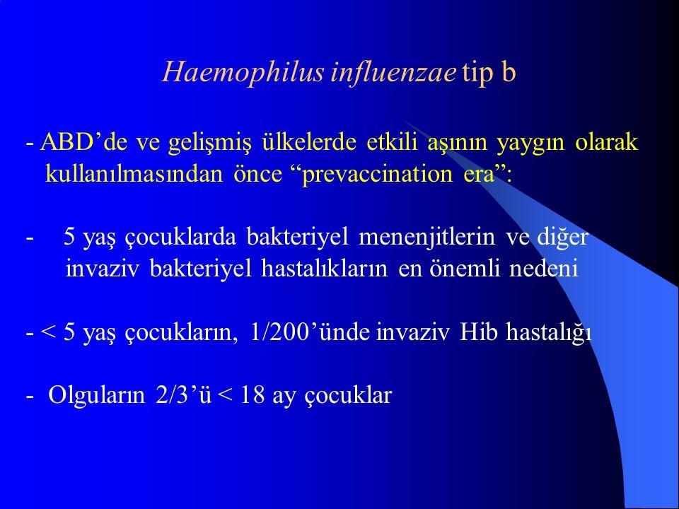 Haemophilus influenzae tip b