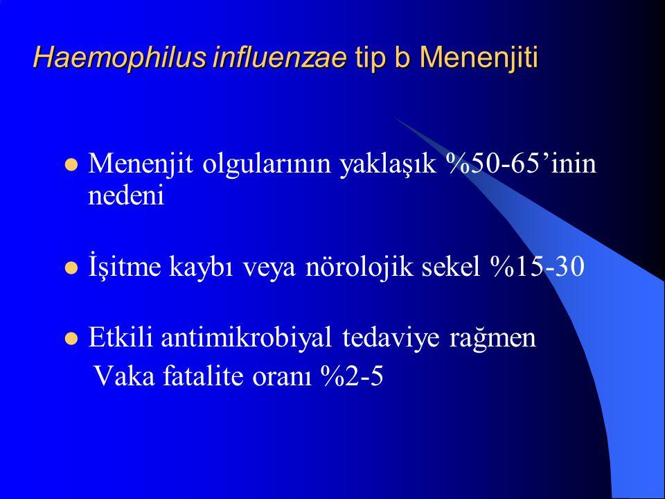 Haemophilus influenzae tip b Menenjiti