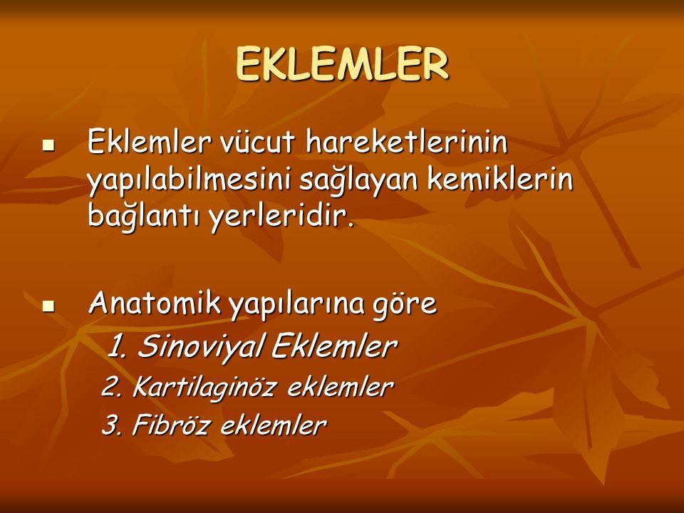 EKLEMLER Eklemler vücut hareketlerinin yapılabilmesini sağlayan kemiklerin bağlantı yerleridir. Anatomik yapılarına göre.