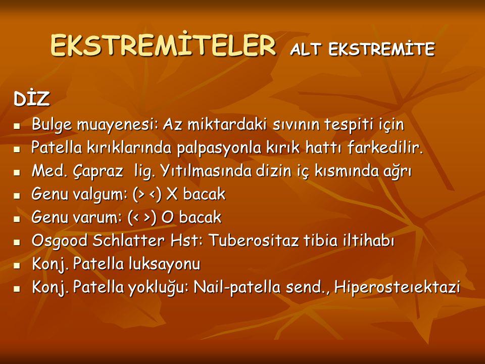 EKSTREMİTELER ALT EKSTREMİTE
