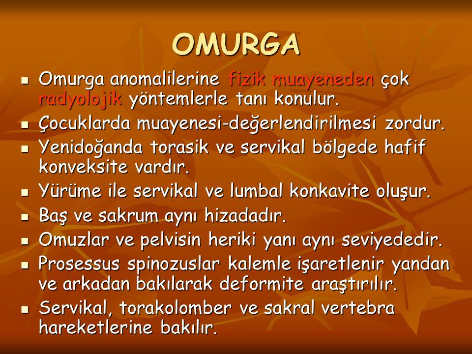 OMURGA Omurga anomalilerine fizik muayeneden çok radyolojik yöntemlerle tanı konulur. Çocuklarda muayenesi-değerlendirilmesi zordur.