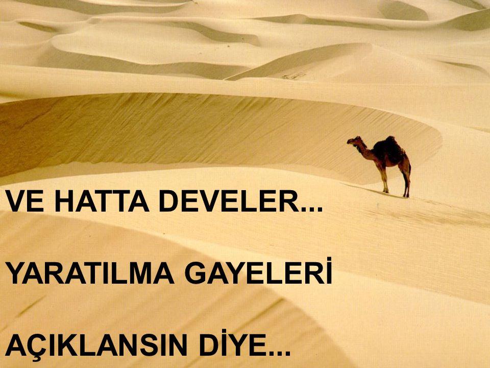 VE HATTA DEVELER... YARATILMA GAYELERİ AÇIKLANSIN DİYE...