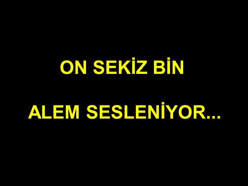ON SEKİZ BİN ALEM SESLENİYOR...