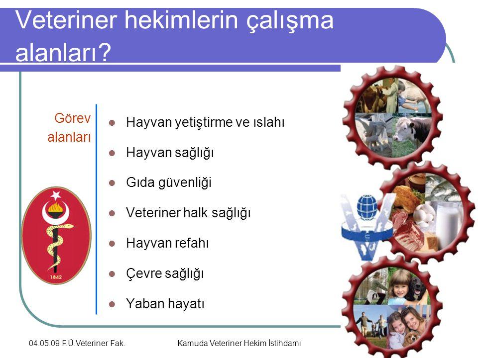 Veteriner hekimlerin çalışma alanları