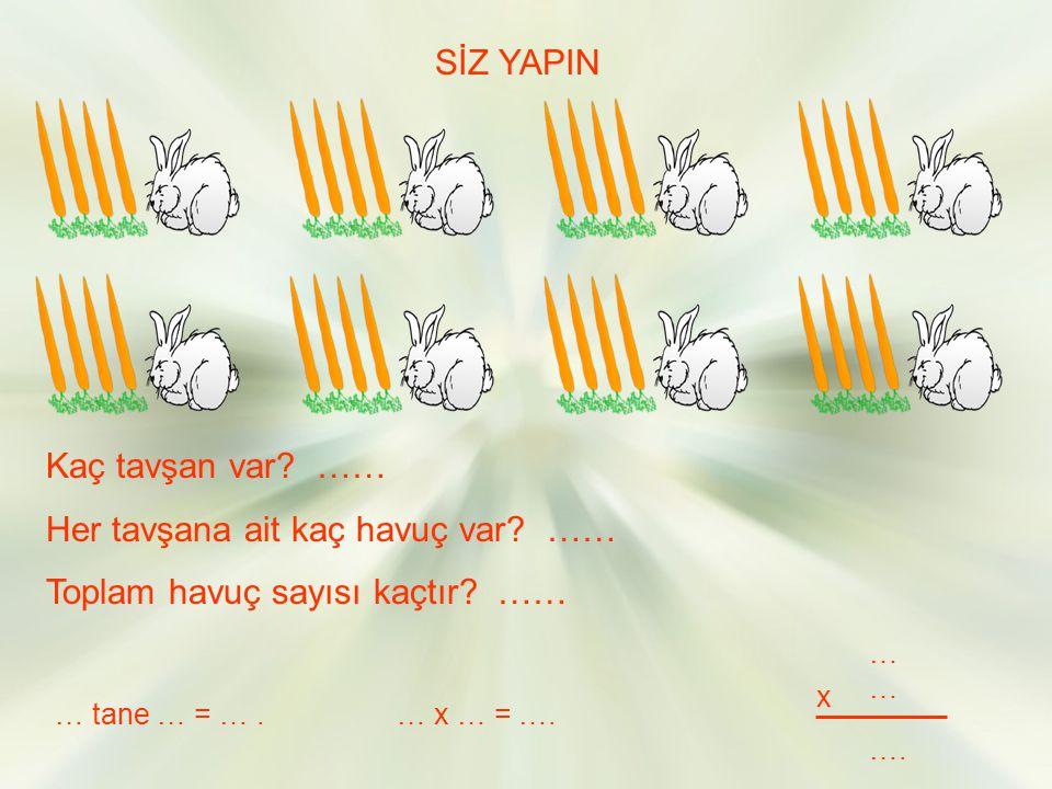 Her tavşana ait kaç havuç var …… Toplam havuç sayısı kaçtır ……